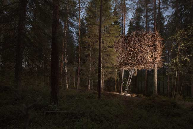 Treehotel Sweden Bird's Nest Exterior