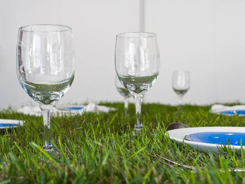 wine glasses on a Grass Top PicNYC Table