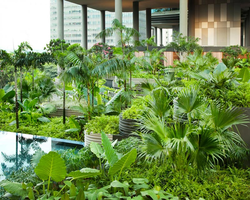 exterior view of the plants at the Parkroyal Singapore