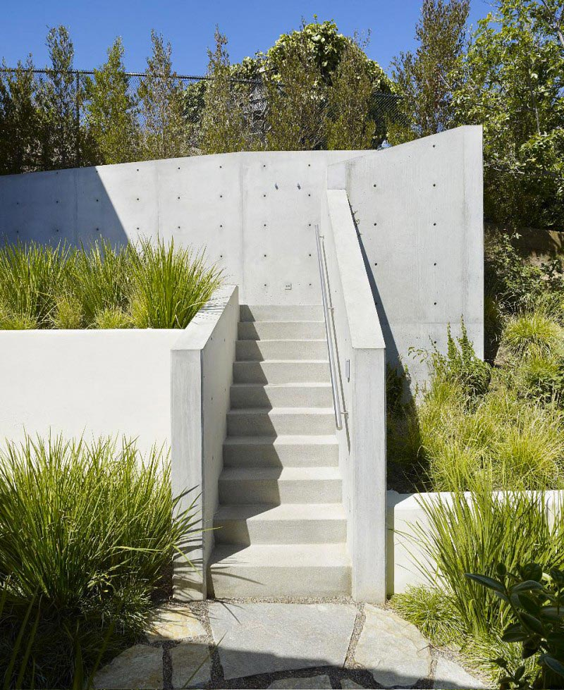 Concrete stairs leading up to The Banyan Treehouse by Rockefeller Partners Architects