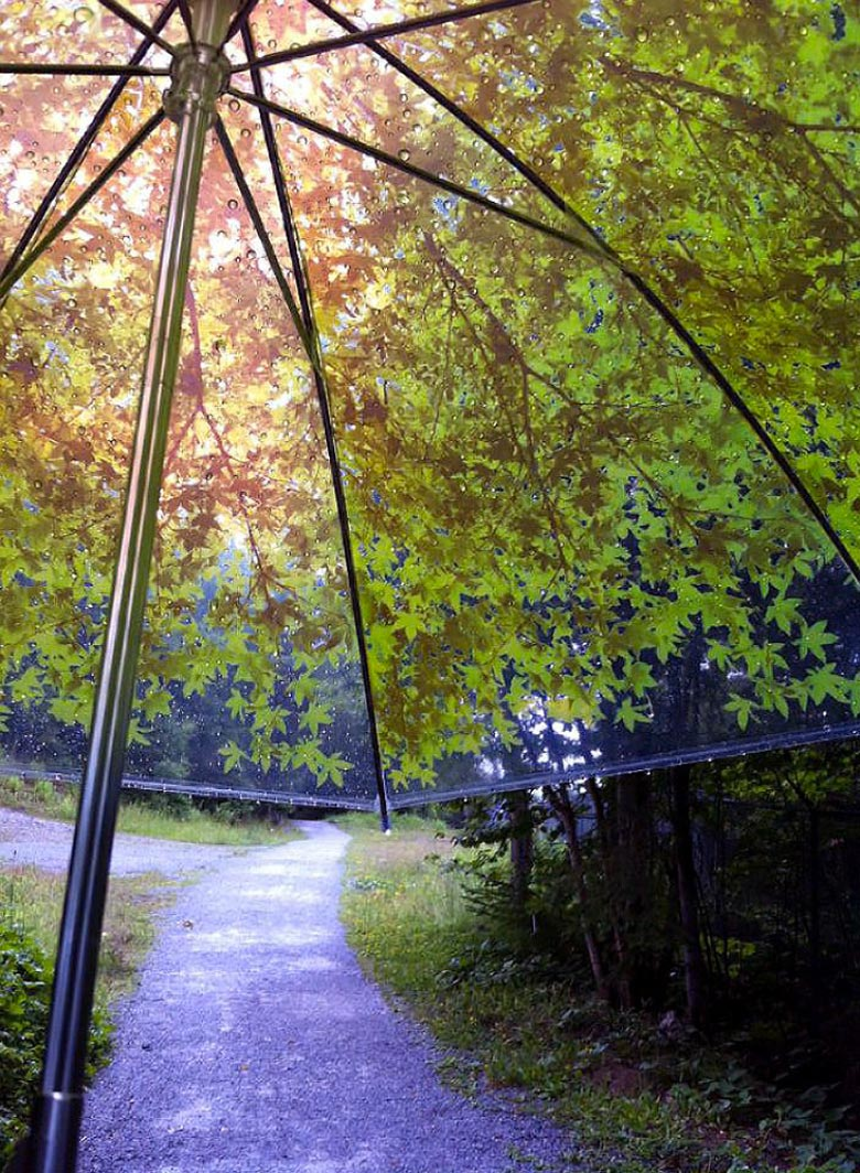 Komorebiagasa Tree Shade Umbrella by Design Complicity being used on a rainy day