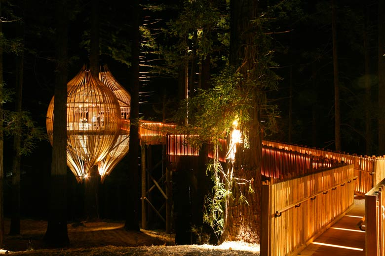 New Zealand's Whimsical Yellow Treehouse Restaurant Towers Above The  Redwood Forest | Inhabitat - Green Design, Innovation, Architecture, Green  Building