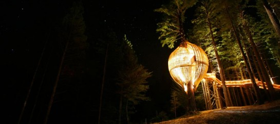 YELLOW TREEHOUSE RESTAURANT IN NEW ZEALAND | PACIFIC ENVIRONMENTS ARCHITECTS