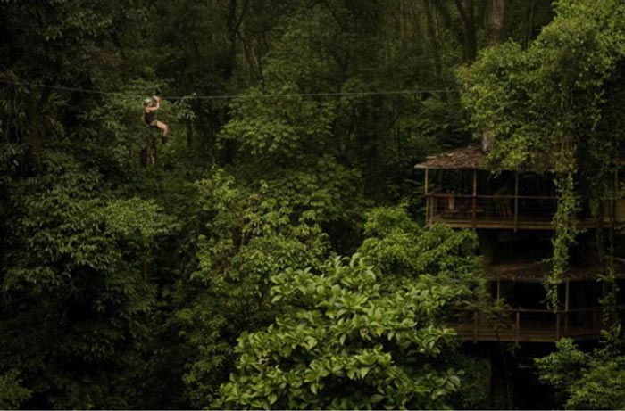 Treehouse in dense forest at the Finca Bellavista Treehouse Community in Costa Rica