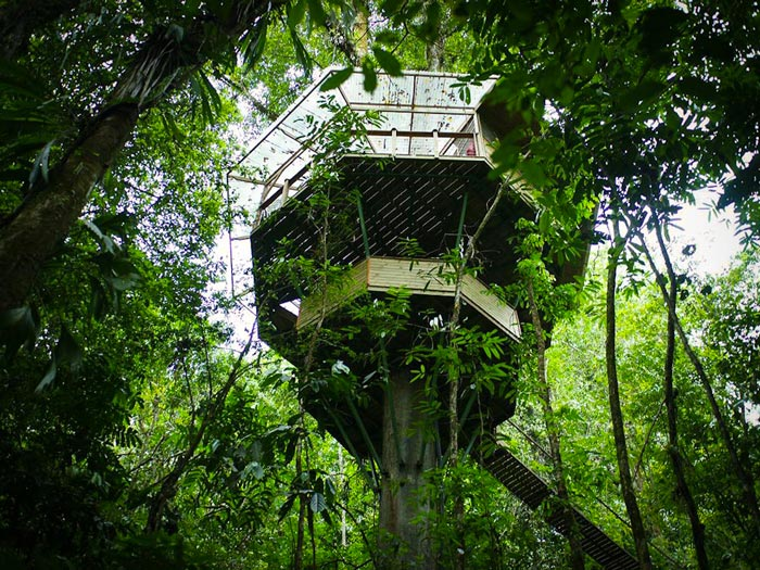 Exterior view of a treehouse at the Finca Bellavista Treehouse Community in Costa Rica