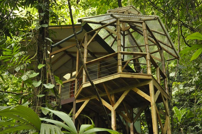 Treehouse architecture at the Finca Bellavista Treehouse Community in Costa Rica