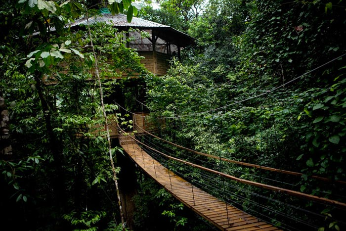 Wooden rope bridge at the Finca Bellavista Treehouse Community in Costa Rica
