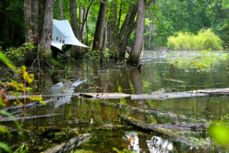 Nube Hammock Shelter by Sierra Madre being used in a swamp area