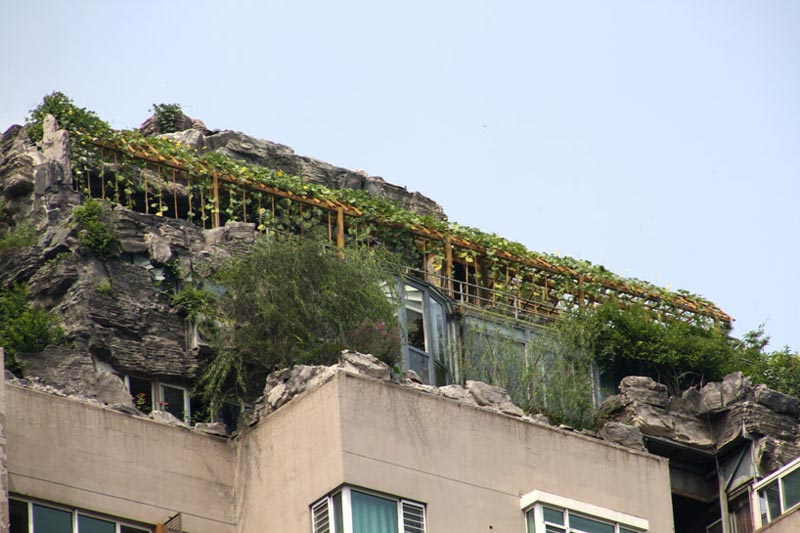 Trees and shrubs on the rooftop of a Beijing High-rise
