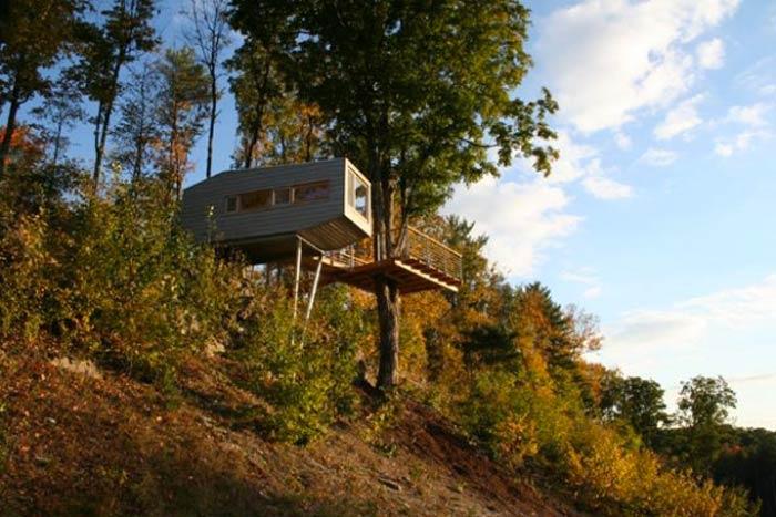 Baumraum Treehouse in New York