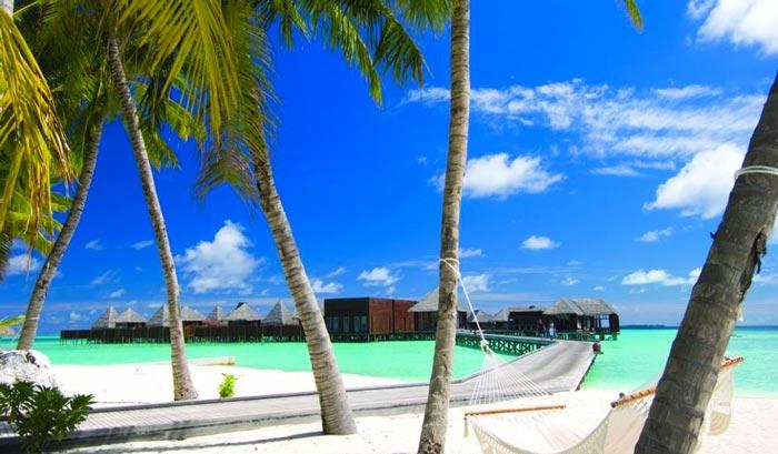 Conrad Maldives Rangali Island Hotel view of the beach, palm trees and white wooden boats