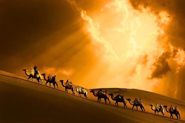Camel ride in the dunes outside the Desert Lotus Resort in Mongolia in the Gobi Desert