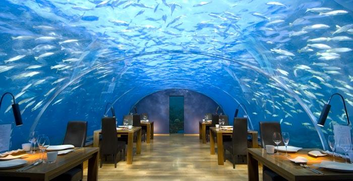 Ihtaa Underwater Restaurant at the Conrad Maldives Rangali Island on Jebiga