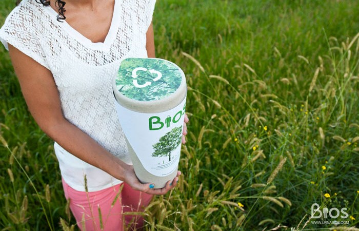 Bios Urn A Biodegradable and eco-friendly Urn