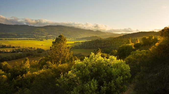 Landscape in Napa Valley from Calistoga Ranch