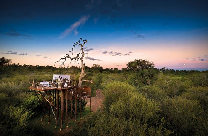 Treehouse accommodation at Lion Sands in South Africa