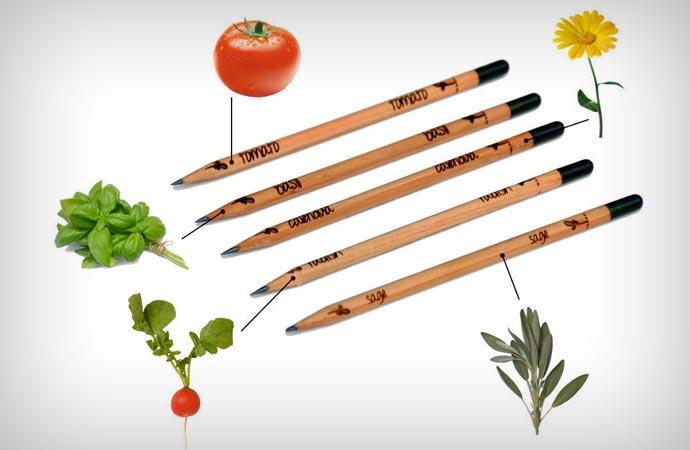 Sprout Plantable Pencil