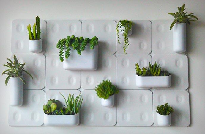 Vertical magnetic garden