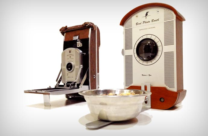 Bird Photo Booth and old polaroid camera