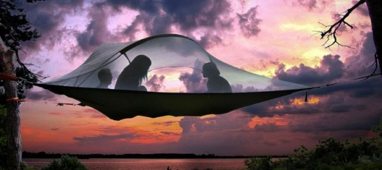 Stingray Tree Tent | By Tentsile