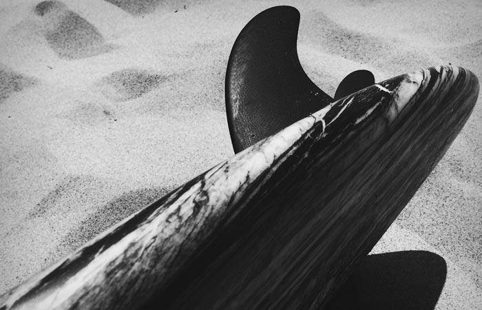 Alexander Wang and Haydenshapes surfboard