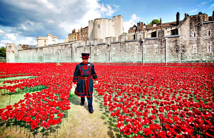 Remembrance day at the Tower of London