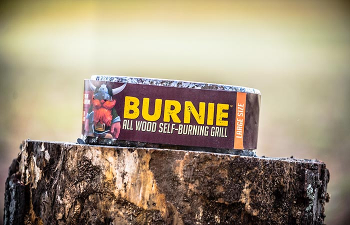 Burnie portable campfire log
