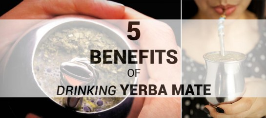 5 HEALTH BENEFITS OF DRINKING YERBA MATE