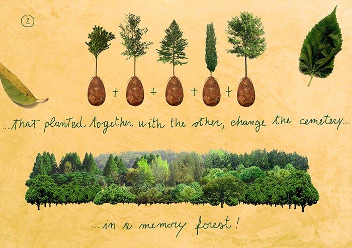 Memory forest comprised of Capsula Mundi