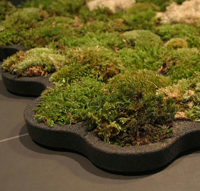 Moss Bathroom Mat By Nection Design