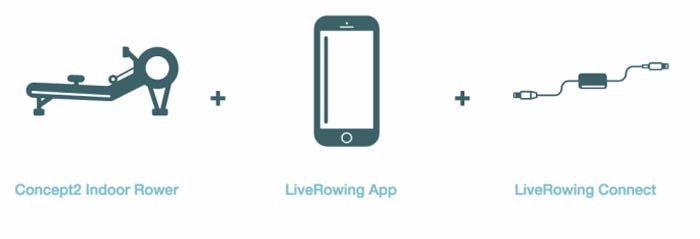 how the live rowing app works