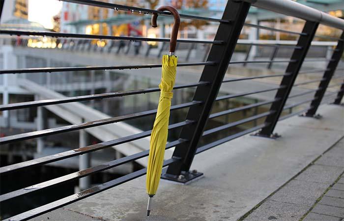 Cypress Umbrella Classic Yellow Design