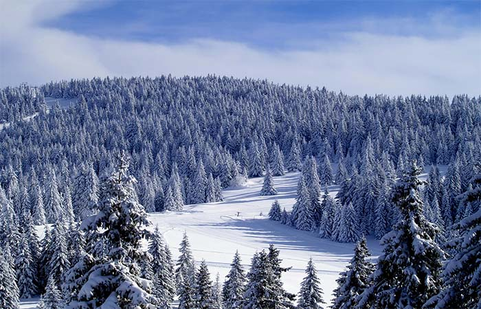 Kopaonik in the winter