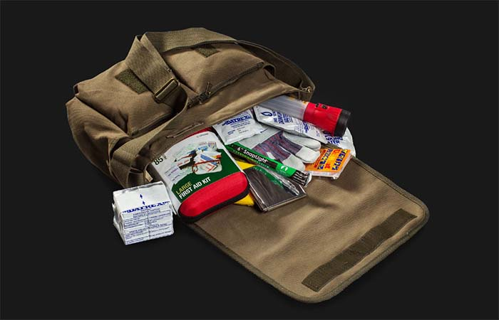 The Walking Dead Bag With Essential Apocalypse Things