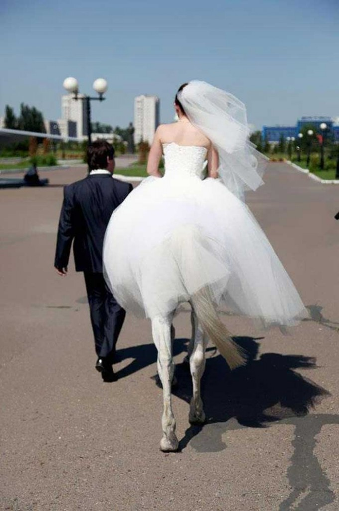 A bride riding a horse and a groom
