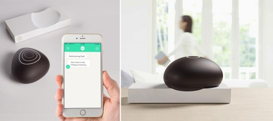 Dojo | Smart Home Network Security System