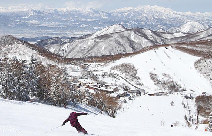Shiga Kogen ski resort, Japan.
