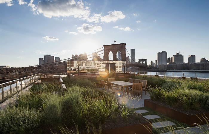 Brooklyn Apartment Building With Communal Roof Garden The View