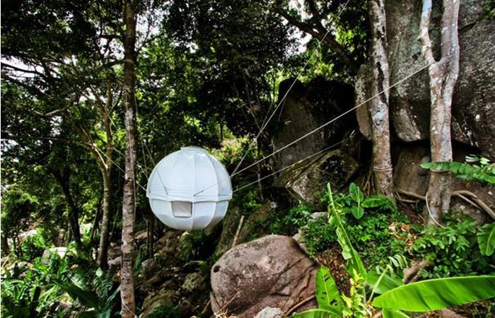 Cocoon Tent Treehouse hanging between the trees in the forest.