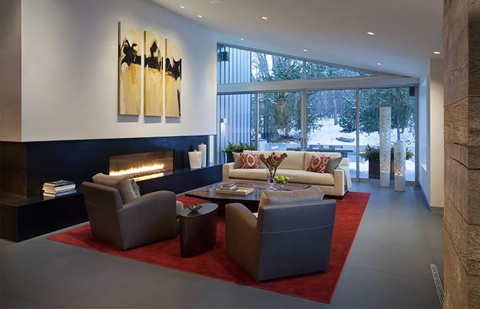 Black Birch Modern living room with a fireplace.