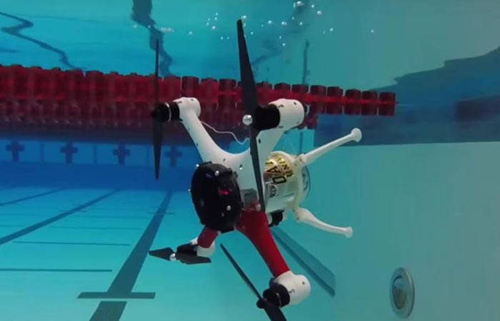 Loon Copter diving in a swimming pool, at a 90 degree angle.
