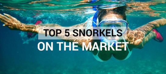 Top 5 Snorkels On The Market