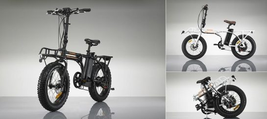 Radmini | Foldable Fat Electric Bike