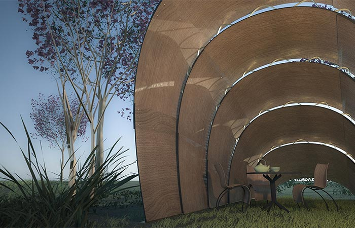 The Front Of Armadillo Tea Canopy