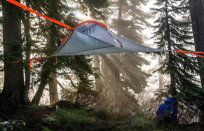 Tentsile Flite suspended in a dense forest