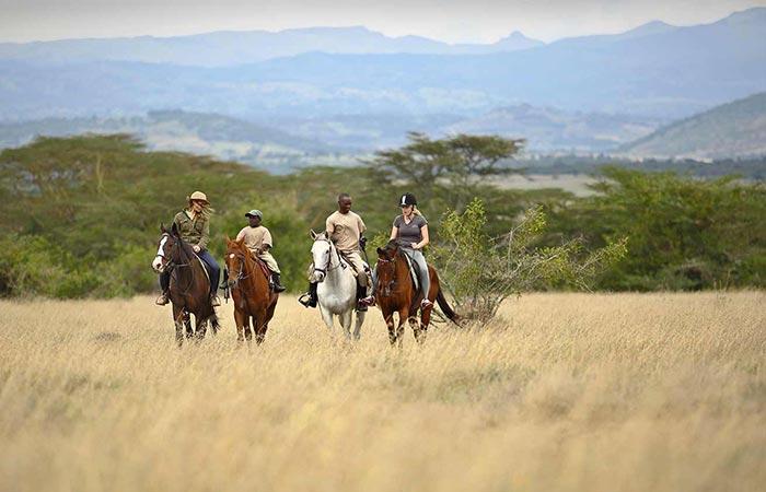 The Safari Collection Horse Riding