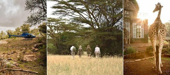 Explore The Wilderness Of Kenya | The Safari Collection