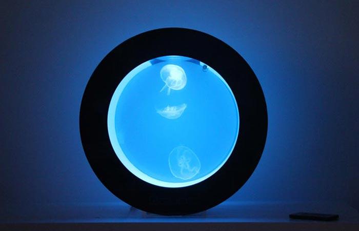Orbit 20 with blue lighting