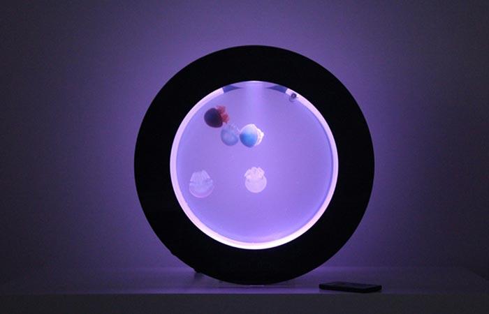 Orbit 20 with purple lighting