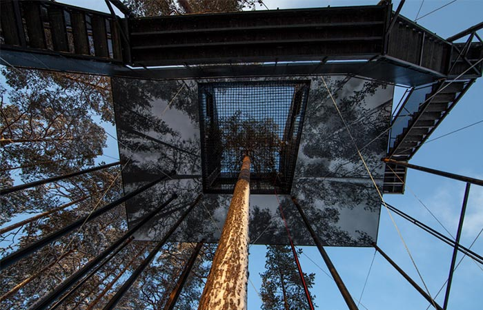 a look up to a treehouse